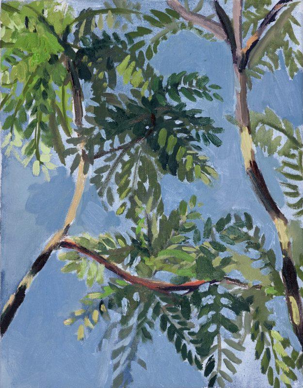 Hans-Willi Notthoff – PLEIN AIR – Akazien, 45 x 35 cm, Öl auf Leinwand, 2002